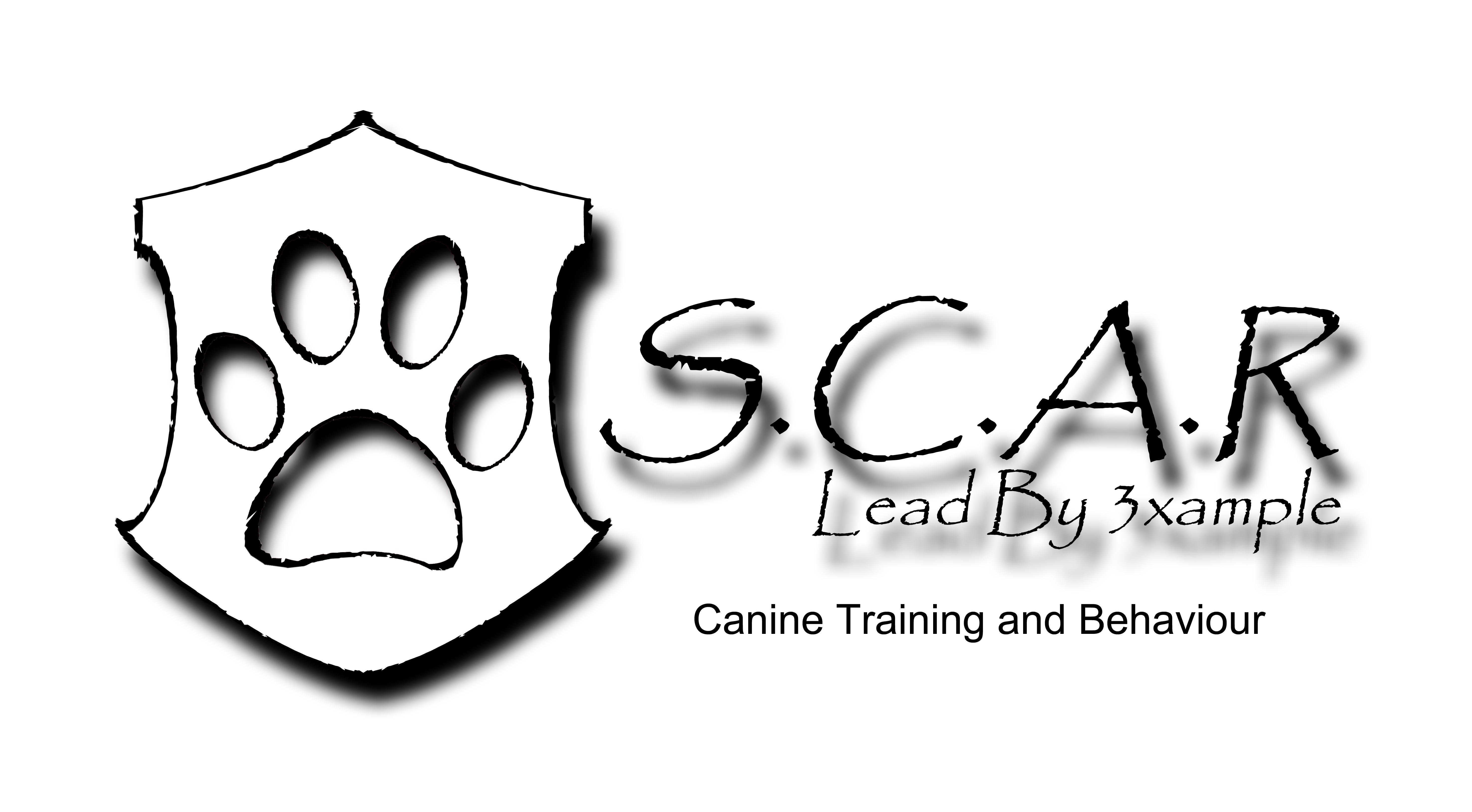 Scar Canine School